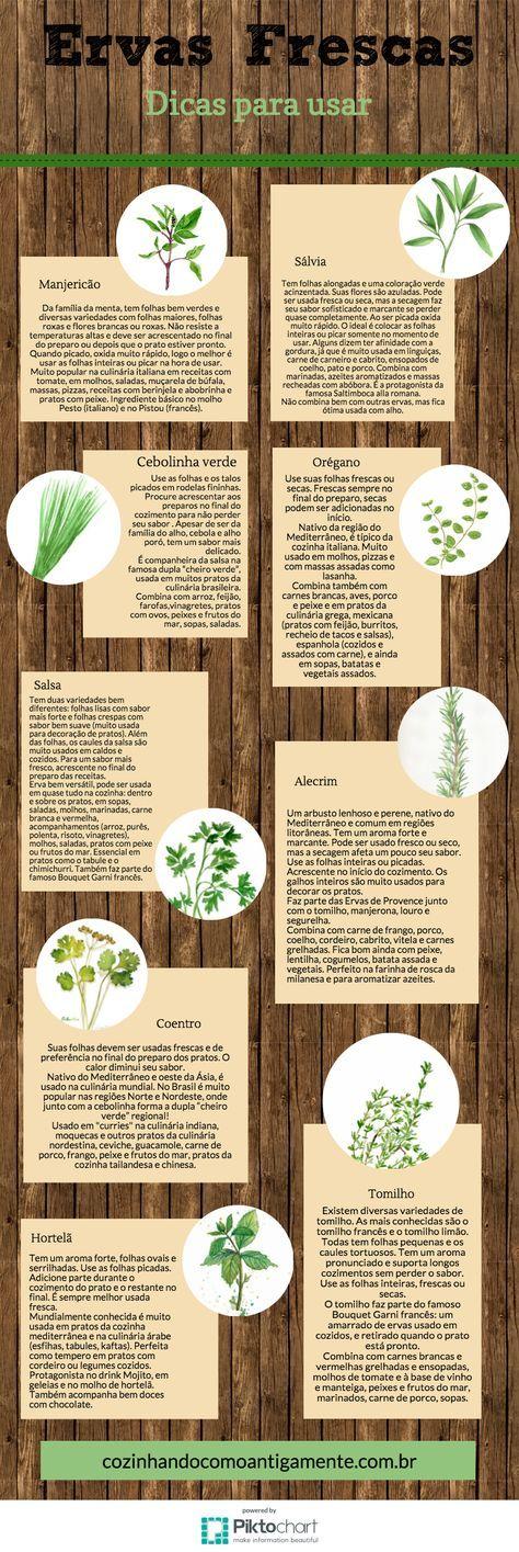 Ervas frescas - Dicas para usar