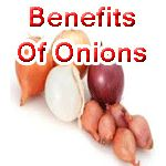 http://www.indianbazars.com/2017/06/benefits-of-onion.html Benefits Of Onion, how onions heal us, health benefits of Onions, आइये जानते हैं प्याज के फायदे, कैसे लाभ देता है प्याज, know how it is good for beauty and sex power.