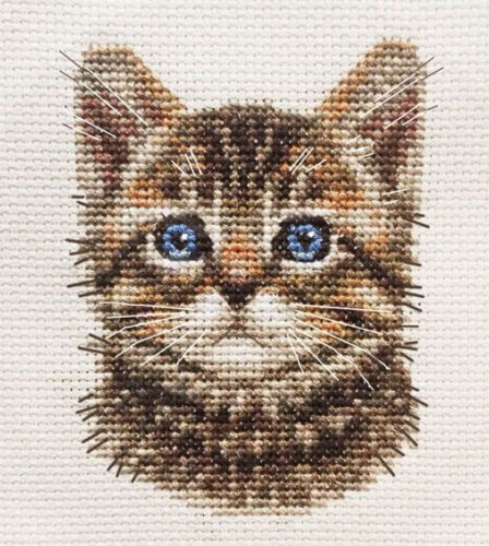 TABBY-CAT-KITTEN-Detailed-Face-Full-counted-cross-stitch-kit-for-you-to-sew