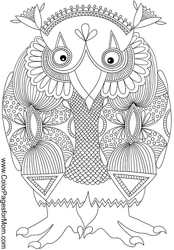 17 Best Images About Coloring Owl On Pinterest