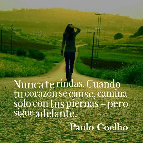 Paulo Coelho Quotes Life Lessons: 744 Best Paulo Coelho Images On Pinterest