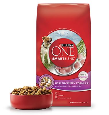 Healthy Puppy SMARTBLEND® puppy food from Purina ONE® is high in protein and formulated specifically for the needs of your growing puppy.