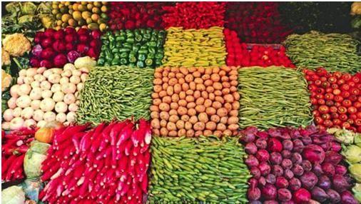 Agricultura ecológica y agricultura sostenible, el camino al futuro | i·ambiente ww.i-ambiente.es/?q=blogs/agricultura-ecologica-y-agricultura-sostenible-el-camino-al-futuro