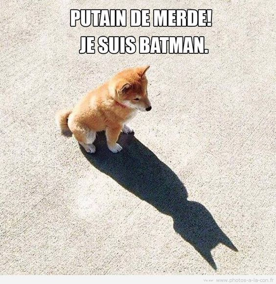 Putain de merde ! Je suis Batman.
