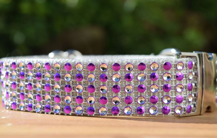 """Bling Dog Collar in Silver and Purple, Adjustable Collar 3/4"""" or 1"""" wide in Small, Medium, Large, Extra Large or Custom by DelaheyandCo on Etsy"""