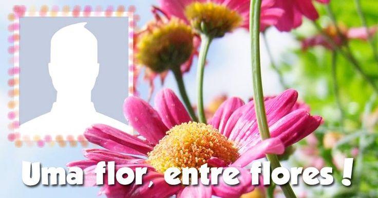 Coloque você também sua foto em uma linda moldura de Flores!