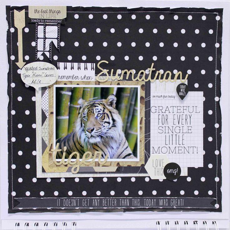 Sumatran Tiger Calendar layout for Kaisercraft - Scrapbook.com