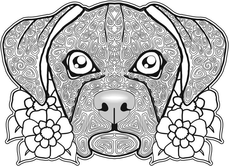 230 Best Images About Coloriage Mandala Chien On Pinterest