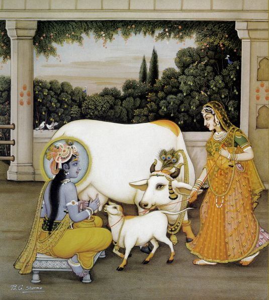 Krishna milking a cow-http://theharekrishnamovement.org/category/cow-protection/