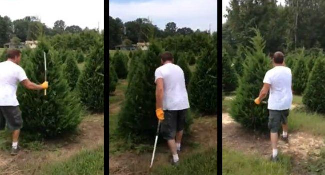 Este Homem é Um Autêntico Jardineiro Samurai!