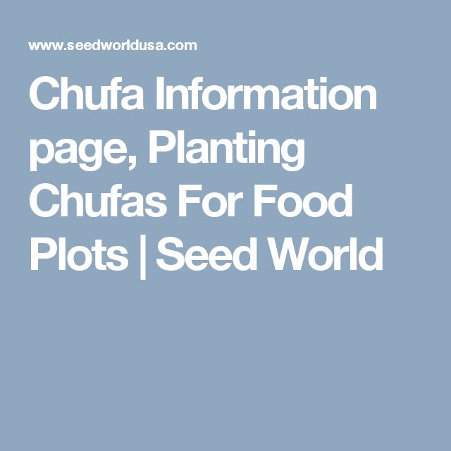 Chufa Information page, Planting Chufas For Food Plots | Seed World