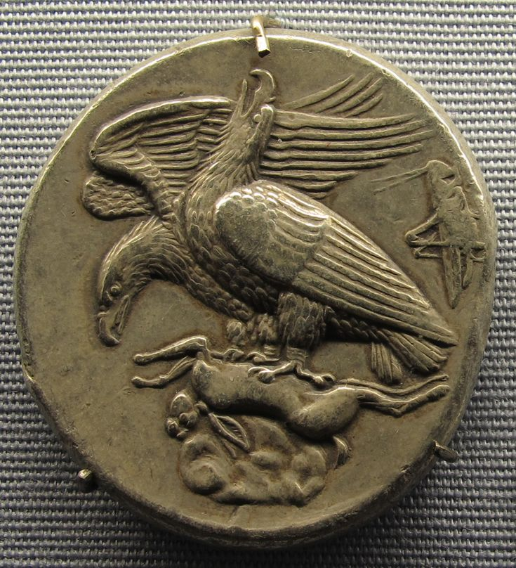 Ancient Greek tetradrachm coin from Akragas, 410 BC. A grasshopper is depicted on the right.
