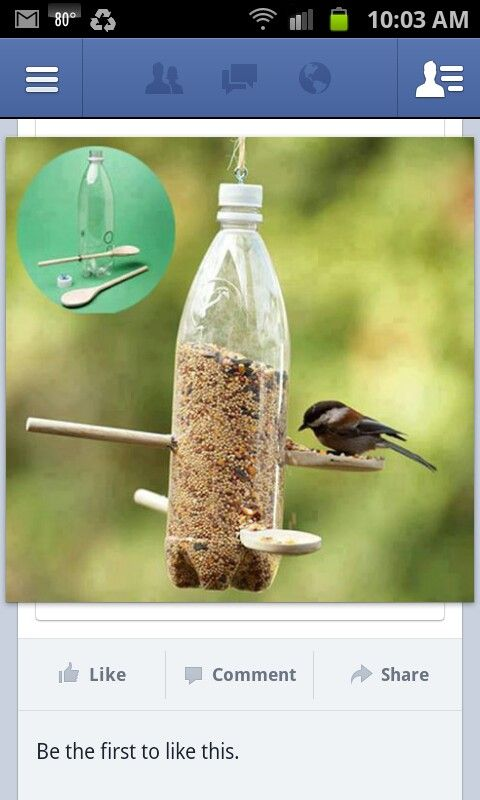 Bird feeder made with empty soda bottle and two wooden spoons.