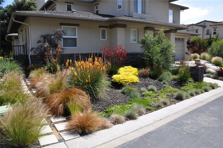 103 best images about drought tolerant landscaping on for Front yard plant ideas