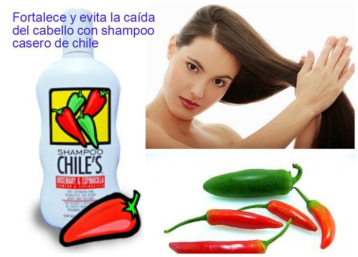 Shampoo de chile casero para evitar la caída del cabello y fortalecerlo