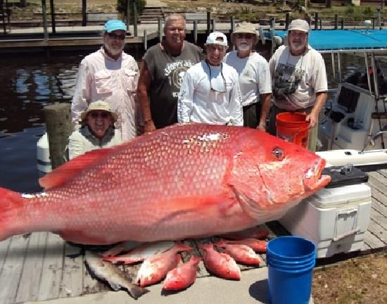 Mexico Beach Florida Tourism | Mexico Beach Charters - Mexico Beach - Reviews of Mexico Beach ... - good charter info. The fishing is amazing in this area!