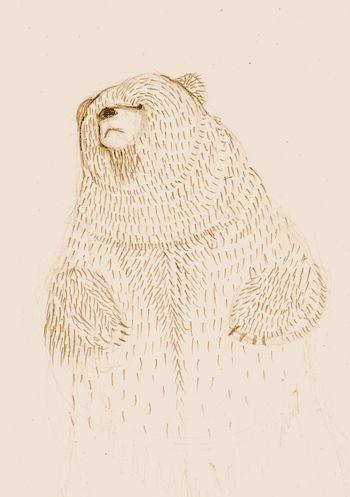 Dancing bear  #bearillustration