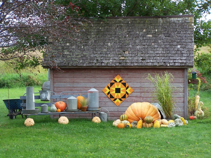 Hawk valley garden my barn quilt and giant pumpkin for Garden shed quilting