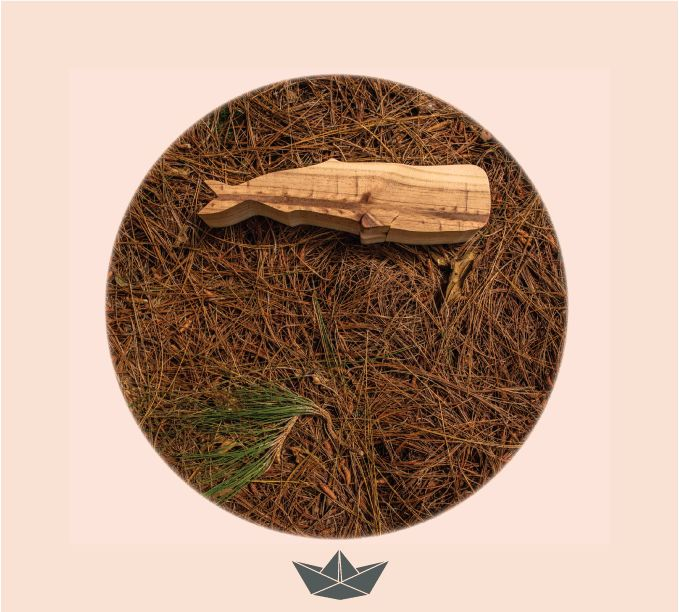 Pine whale for your room