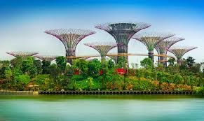 Garden by the bay, you can see artificial flowers and plants in a big warm house! Spending a morning over there!