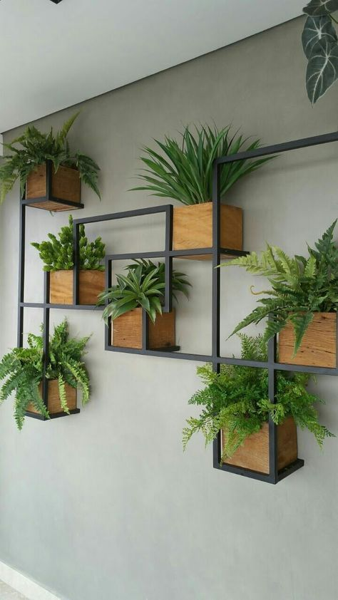 Clever way of displaying plants. Geometric and mod…