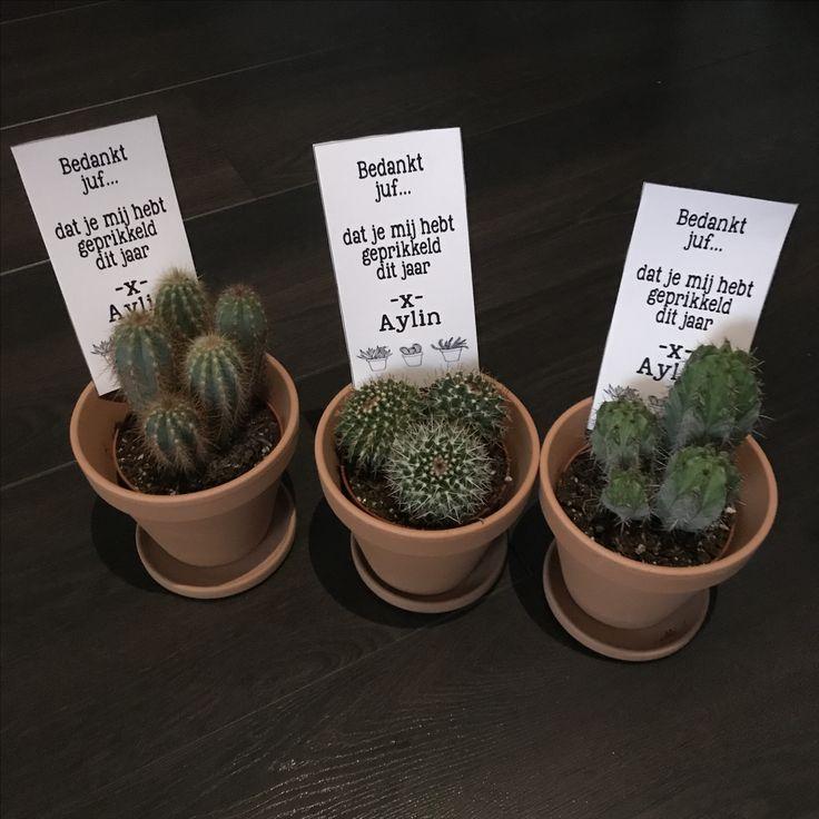 Bedankje juf #cactus