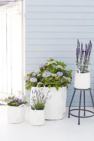 Deze canvas tas is de ideale verpakking voor die mooie olijfboom of je lavendel.