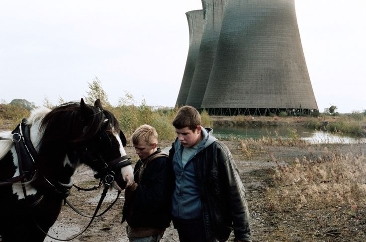 What to watch on Netflix.  5 Disturbing Movies on Netflix You'll Never Forget. The Selfish Giant (2011)