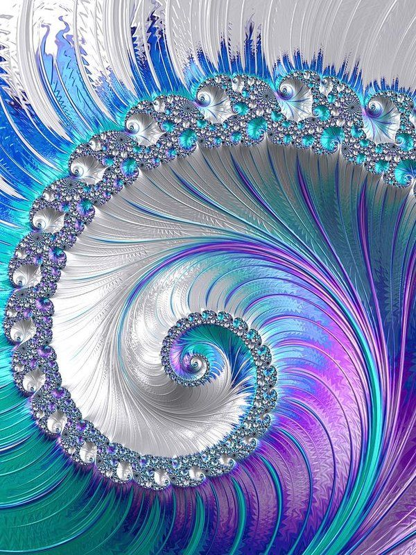 Spiral Print featuring the photograph Spiralling Fractal Spring by Mo Barton