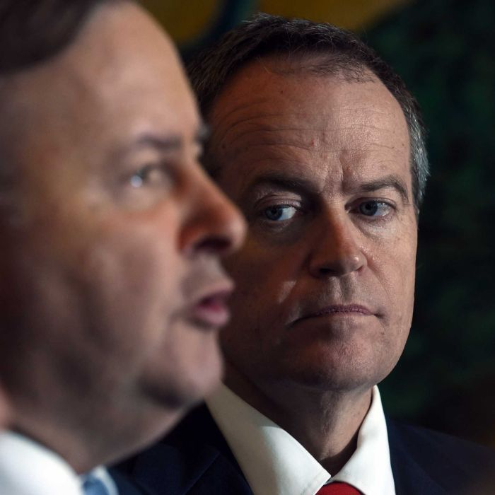 Anthony Albanese says he has real concerns about Bill Shorten's announcement that he supports the policy of turning back asylum seeker boats. http://www.abc.net.au/news/2015-07-23/albanese-has-real-concern-about-shorten's-turn-back-statement/6644164