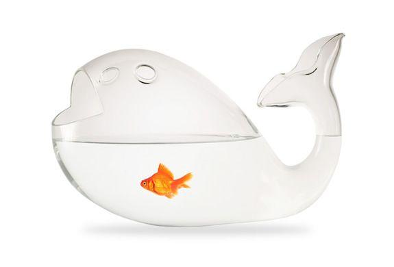 Fish shaped fish bowl // ALESSANDRA BALDERESCHI. How meta.: Alessandra Baldereschi, Fish Tanks, Pet, Giona Aquarium, Aquarium Fish, Fishbowl, Products, Fish Bowls, Whales