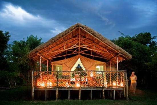 The Best Maasai Mara National Reserve Specialty Lodging
