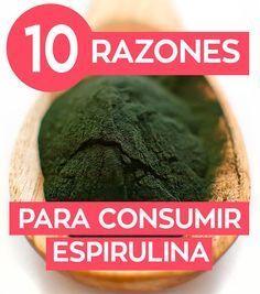 Propiedades y beneficios de la alga espirulina