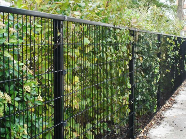 Metal Mesh Fence Mesh Fencing Welded Wire Fence Wire