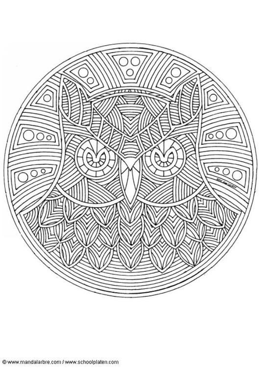 Coloring page owl mandala coloring picture owl mandala Educational coloring books for adults