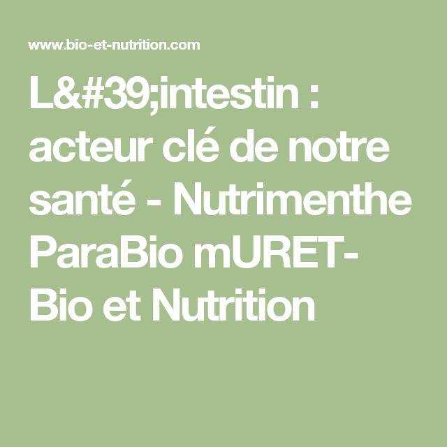 L'intestin : acteur clé de notre santé - Nutrimenthe ParaBio mURET- Bio et Nutrition