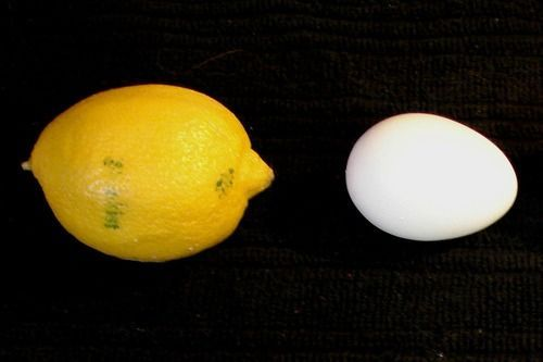 Make you own Lemon Egg Calcium Supplement-The calcium citrate you will get from the lemon and egg mixture is one of the very best and purest forms of calcium you can get.
