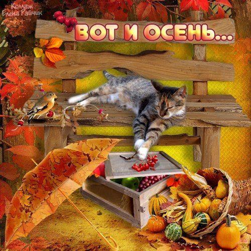 Открытки вот и осень наступила, открытки днем