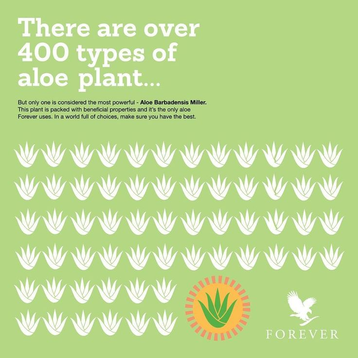 There are over 400 types of  plant... but only one is considered the most powerful - Aloe Barbadensis Miller. This plant is packed with beneficial properties and it's the only aloe Forever Living uses. In a world full of choices, make sure you have the best.   (@foreveruk). #ForeverLiving #Foreverproud #Aloe #Aloevera #barbadensismiller #plant #plantpower