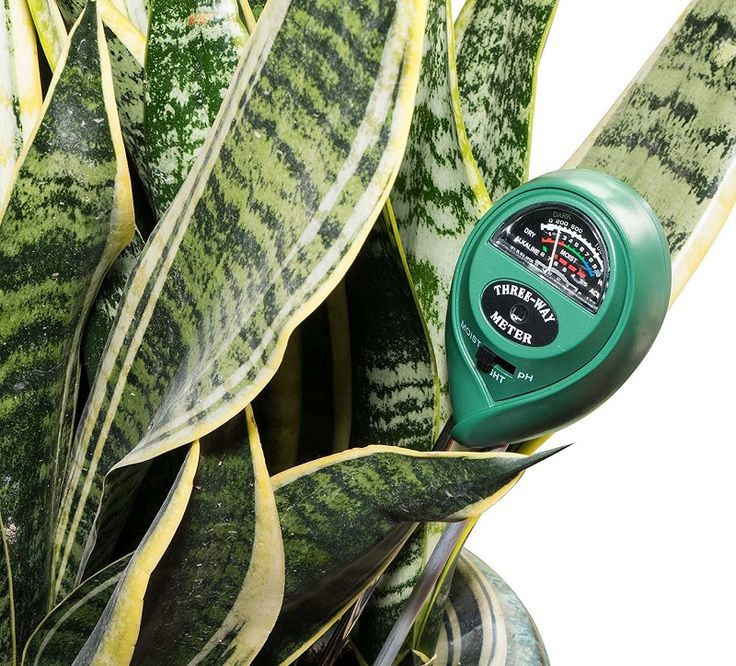 PH meter to test ph levels in soil