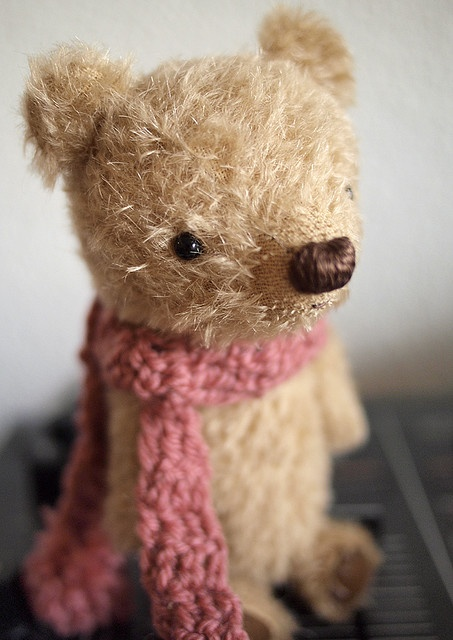 ...little bear, little bear...barely there;  little bear, little bear, looking for a home...but he needs very little care.