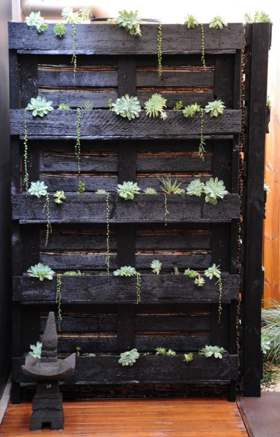 Use those pallets from work to build up the fences behind Sams for free then paint Em and plant them like hanging walls.  Use concrete pavers and pebbles and put a table out there.