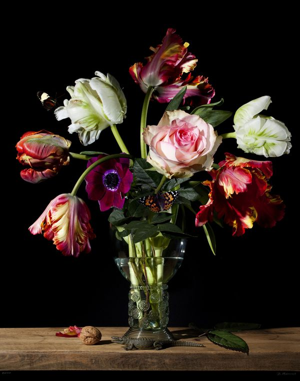 Bas Meeuws (1974) is a passionate photographer who has given a new twist to the traditional Dutch still life with flowers. Meeuws does not paint his flowers with a brush and oil paints, as his famous predecessors from the 17th century did. His images come from a digital reflex camera.