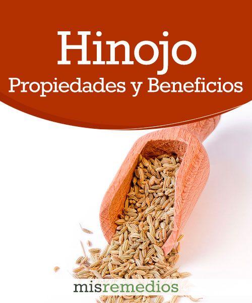 #Hinojo - Propiedades y Beneficios #PlantasMedicinales