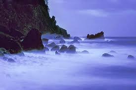 I will miss the ocean.