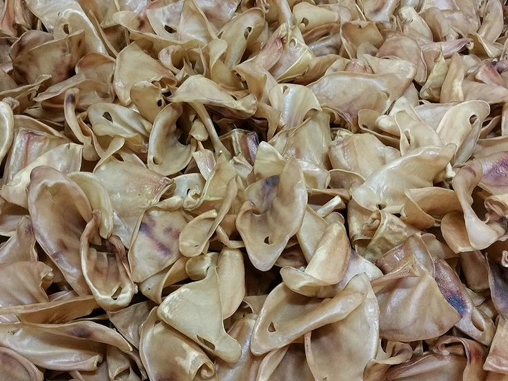 Pig Ears for Dogs | Quality Pork Dog Chews by 123 Treats | 100% Natural Pork Ears Full of Protein for Your Pet -- Visit the image link more details. (This is an affiliate link and I receive a commission for the sales)