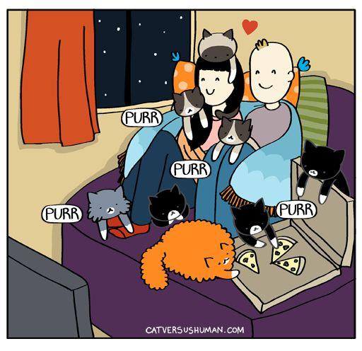 Cat Vs Human • Date night.
