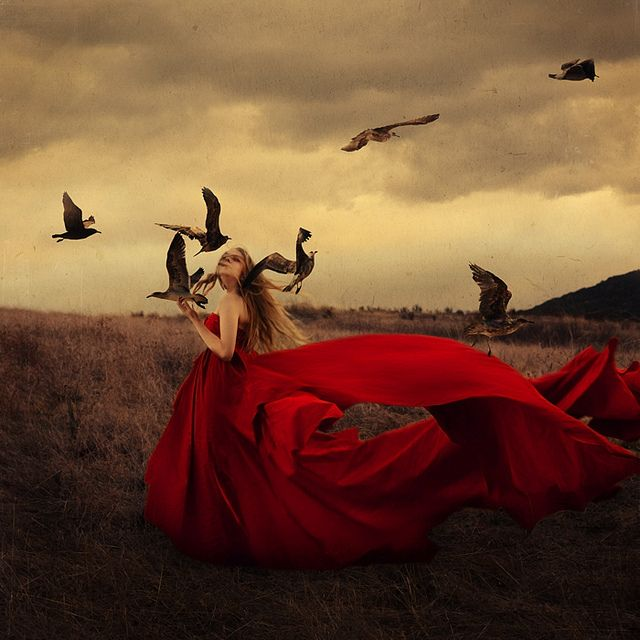 red (I love the color & design of this, but all I can picture are those birds attacking her sandwich!)