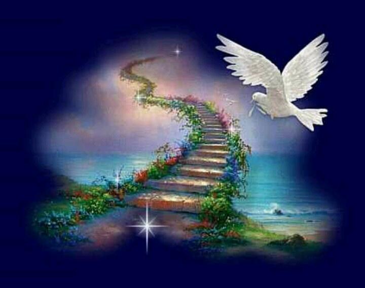 гифка лестница в небеса стоит выкладывать интернет