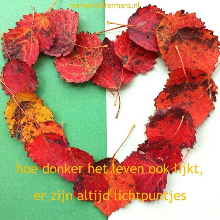 #Lichtpuntje van de week #42.  Mooie herfstkleuren.  Wat was jouw #lichtpuntje van de week?  Voor meer #lichtpuntjes zie http://www.marloesjuffermans.nl